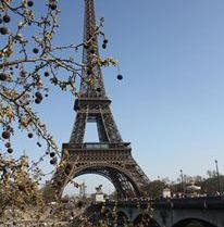 Parisian Spring - always a good idea